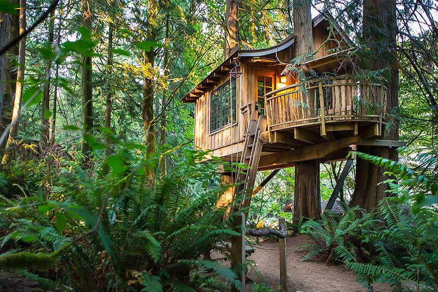 Permalink to:บ้านต้นไม้สุดคลาสสิคที่ สหรัฐอเมริกา